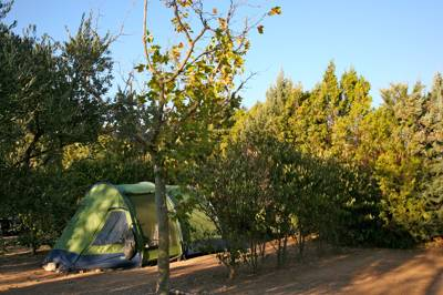 Impossibly cute and impressively neat campsite, with peerless access to pretty Eygalières and the Provence countryside.
