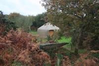 Oak Wood Yurt