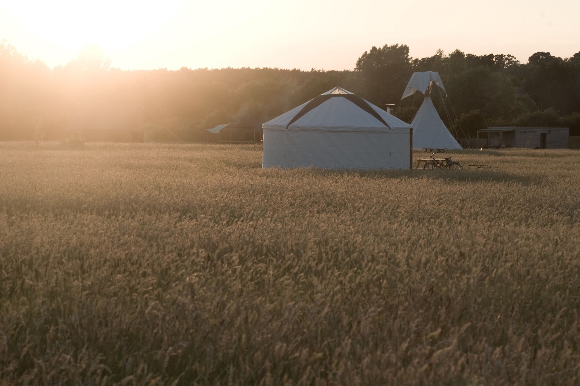 Glamping in West Sussex