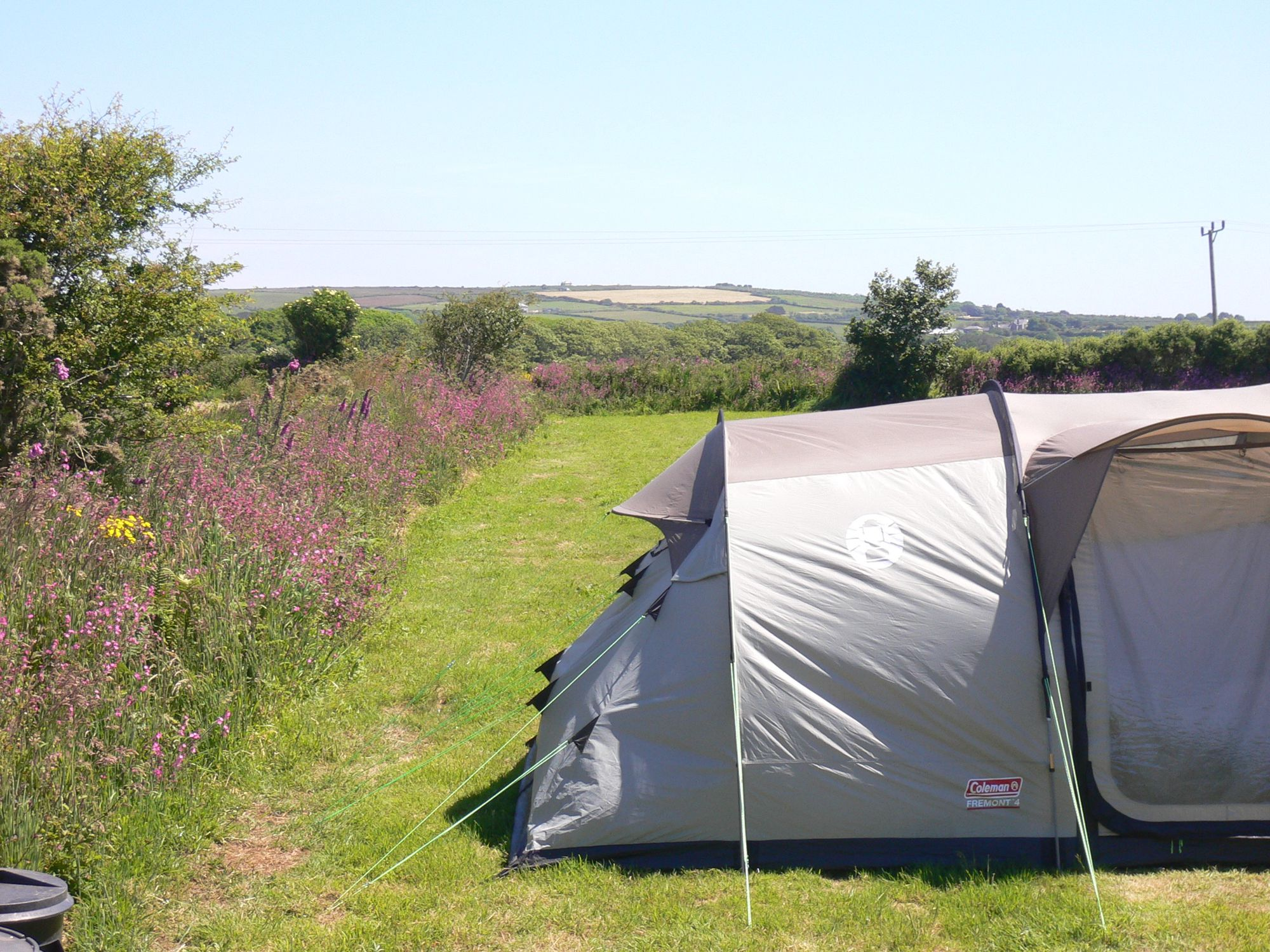 A warm welcome is guaranteed at this site between Helston and Porthleven.