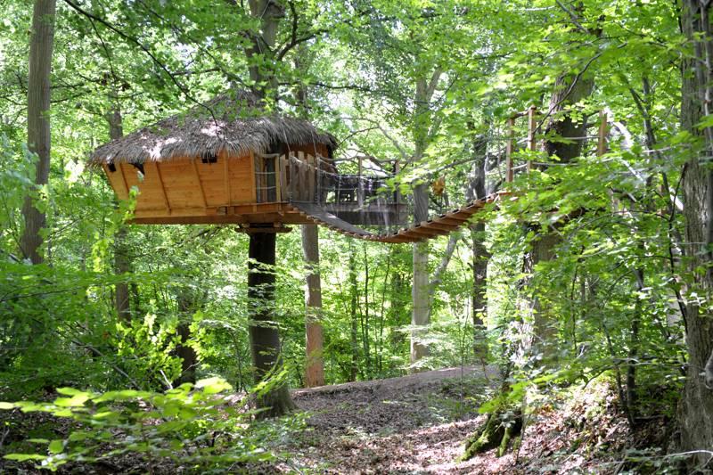 """Canyon"" Tree House"