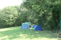 Clover Fields Camping Pitch  Sleeps 6