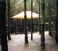 BYO Tree Tent