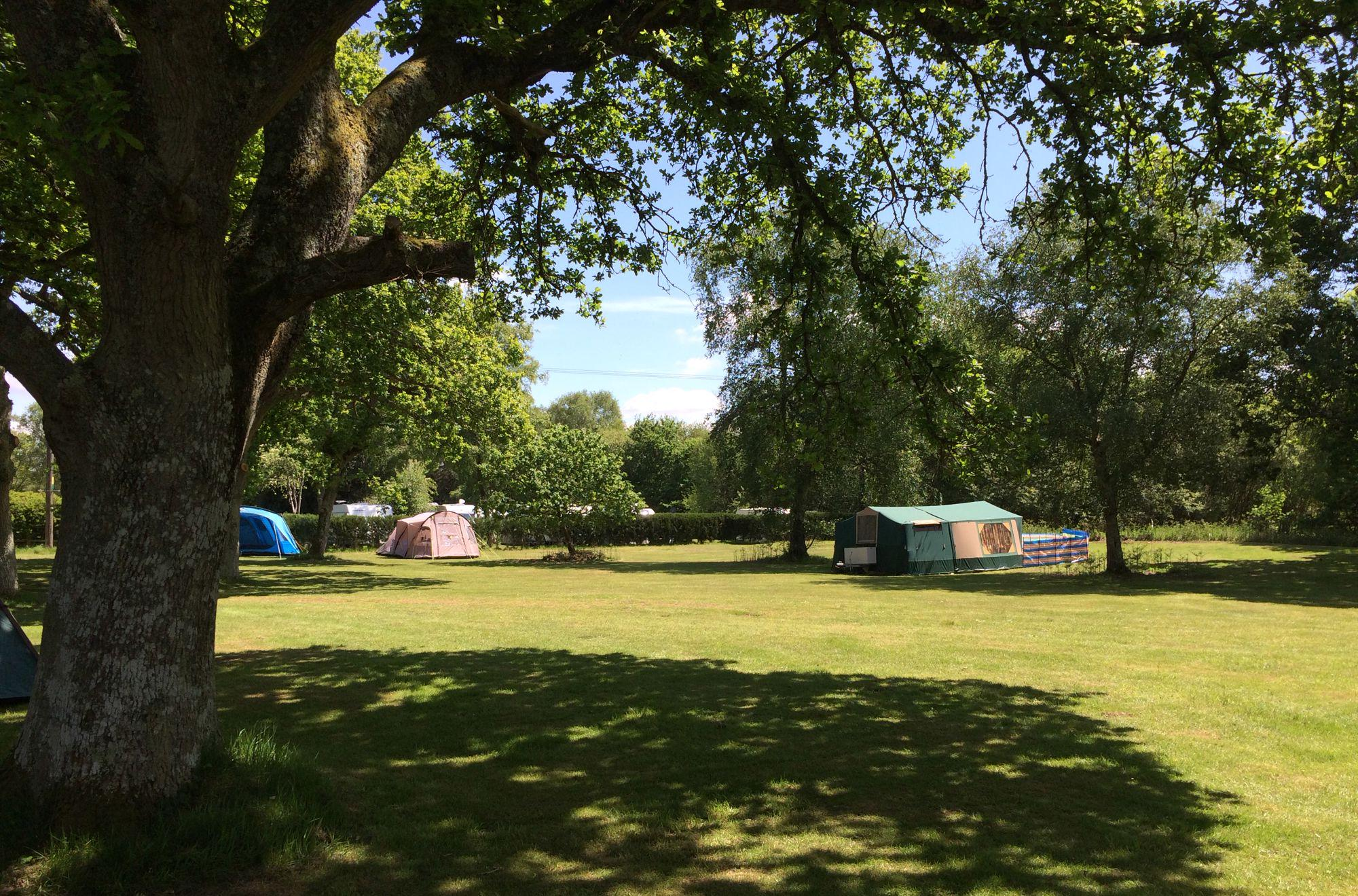 Ringwood Camping | Campsites in Ringwood, New Forest