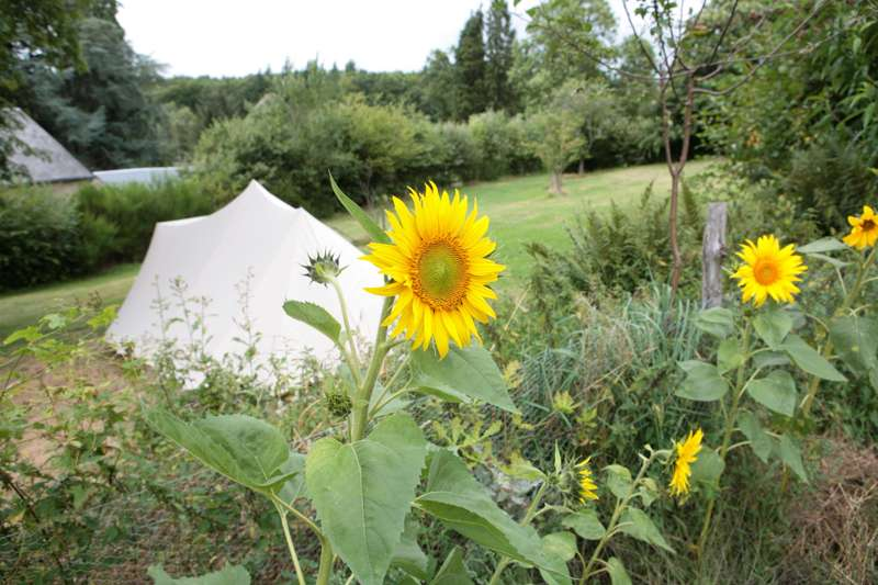 Campsites in France   The Best French Camping Sites