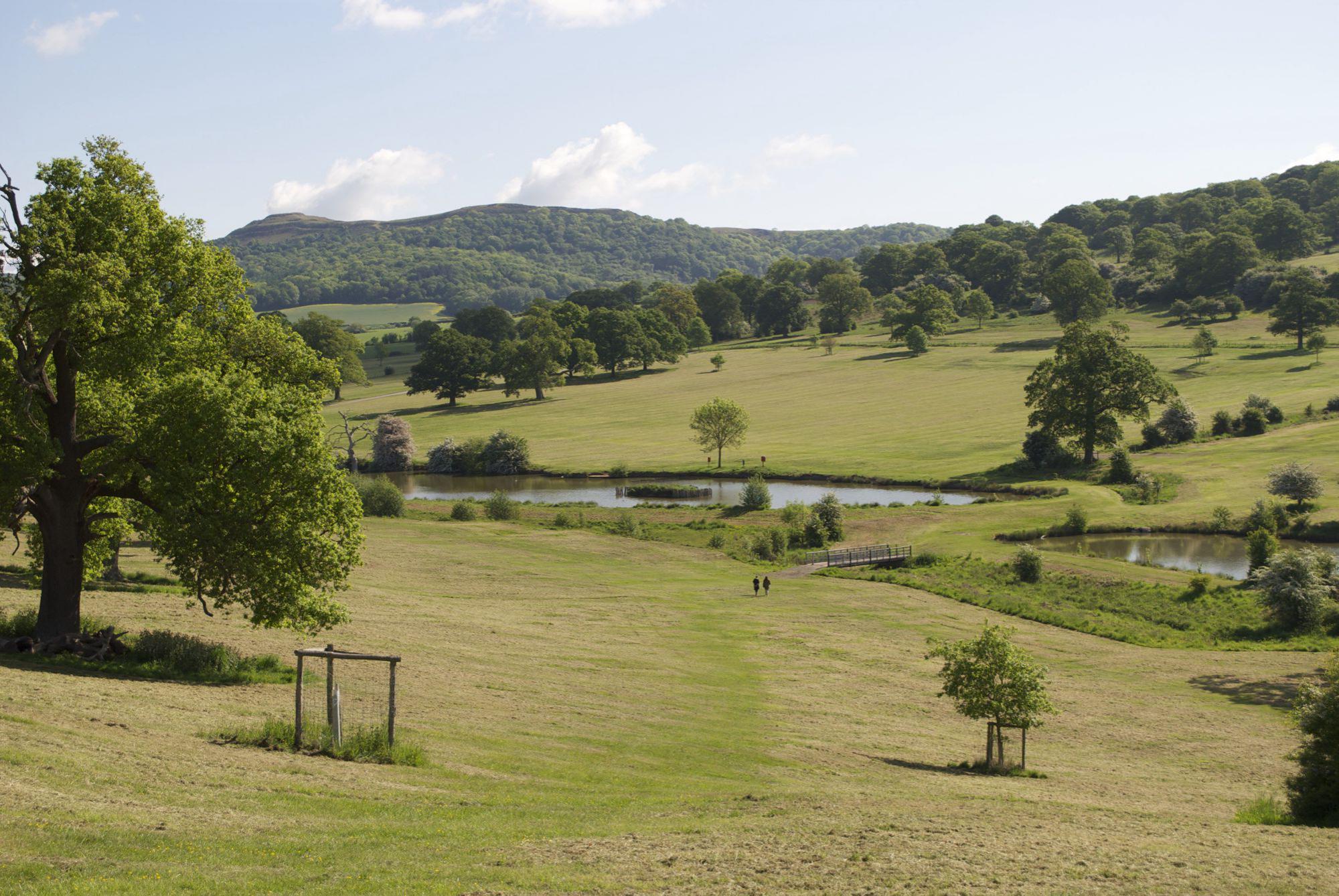Ledbury Camping | Campsites in Ledbury, Herefordshire