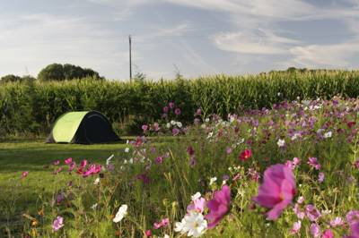 Camping on the farm a short ride away from the Loire Valley's picturesque rivers and grand castles.