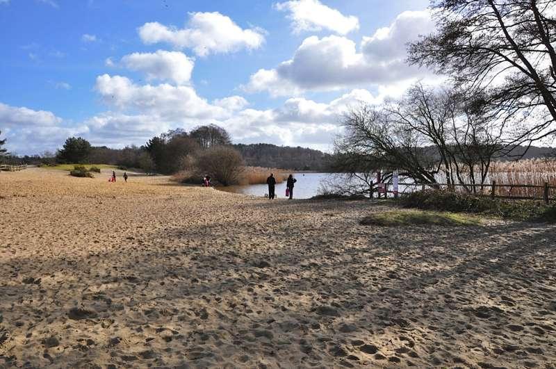 Frensham Common and Ponds